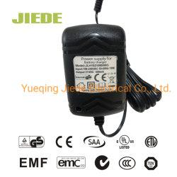 Литиевые батареи зарядное устройство для электрического прибора зарядное устройство с дисплеем GS cETL ETL SAA BS RoHS сертификации