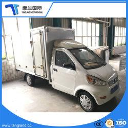 De car/LHD/E-Auto van de Aandrijving van het Type van Large Bestelwagen van het Volume LinkerElektrisch voertuig/Elektrische Auto