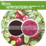 Извлеките Lingonberry