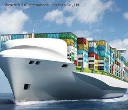 中国Sea著米国のバルク貨物に出荷する各戸ごとサービス低下からのCanada/USA/Finland/Netherlandsへの貨物運送業者の発送取扱店
