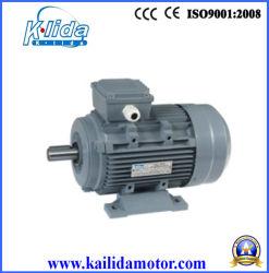 0,25 Kw 2 Pole Trifásico pequeno motor eléctrico
