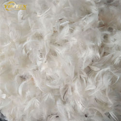 Lavado Branco/cinza de penas de ganso e pato