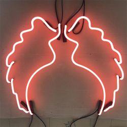 Groothandel China Factory Price Custom Angel Wings Decoratieve glazen buis Neonlicht