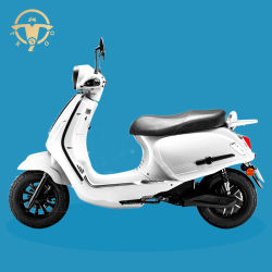 Venta caliente L1e L3e 45-80km/h ciclomotor Scooter eléctrico con la CEE y Certificado Coc Bravo