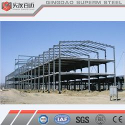 중국 1000평방미터 규모의 페인트 고온 DIP 갈바니ized Steel Structure Building
