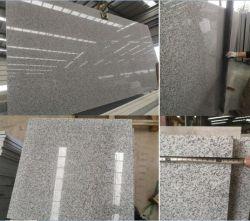 Polished/ha fiammeggiato le mattonelle grige della lastra del granito G603