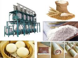 Ensemble complet Norme européenne en matière de bonne qualité moulin à farine de blé