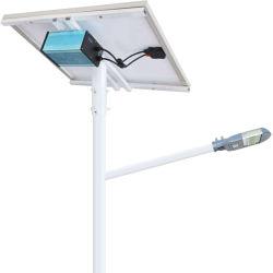 Panneau solaire séparé de la Chine Bonsaï pièce maîtresse de cas de lumière à LED