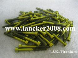 Bouchon de titane vis à tête à six pans creux/Vis DIN912 Gr2 M2-M30 avec couleur d'or pour les GR5