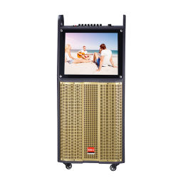 """12"""" 3 vias calculador de estágio profissional de alto-falante com vídeo tocando em sistema de Karaoke"""