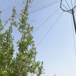 La Compensación Flexible Cable de acero inoxidable para la pajarera malla Zoo