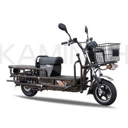 Carico elettrico del motociclo della bici delle rotelle elettriche del carico due per il motociclo elettrico del veicolo di Passanger 2wheels