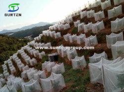 HDPE/PE/Nylon/Pflanzenschutz aus Kunststoff/Moskitonetz/Malaria/Fliegen/Hail/Insekt/Blattlaus/Bienenschutz/sicheres Netz für Landwirtschaft/Gewächshaus/Farm