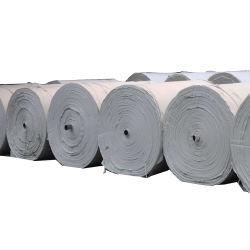 Les géotextiles en polyester non tissé Tissu de matériaux de construction de routes de la géotechnique