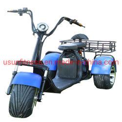 2020 Novo ATV Farm de bicicletas eléctricas ATV com 1500 W de potência do motor