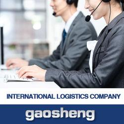 Bester Verschiffen-Agens-Service von Shenzhen nach USA/Großbritannien/Australien/Neuseeland