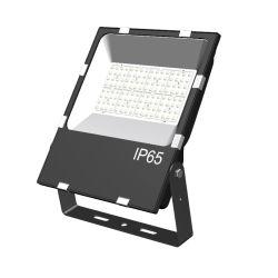 100 W IP65 Lens Edition, illuminazione per affissioni, luce da giardino a LED, proiettore, proiettore a LED