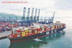 Société de logistique de la mer professionnels /transitaire en provenance de Chine à Shenzhen à Hongkong à l'Australie Amazon Sydney/ Melbourne/Brisbane/prix avec taux bon marché par l'utilitaire DDU DDP