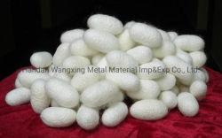 seta grezza del gelso puro bianco naturale del filato di seta di 4A 20/22D