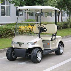 CE ゴルフ用 2 人乗り小型電気自動車( DG C2 - 8 )を承認