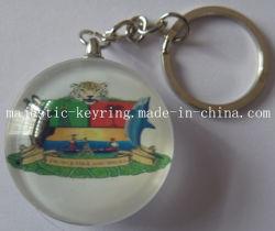 주문을 받아서 만들어진 사진에 의하여 잘 되는 로고 (Hz 1001 K036)를 가진 플라스틱 Keychain
