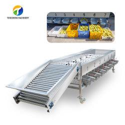 Commerciaux et Industriels de la machine de tri automatique des fruits de Melon Cherry Citrus nombril Calibreuse Orange Food Processor (TS-FS670)
