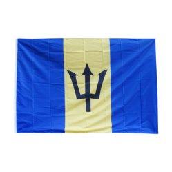Pubblicità veloce delle bandierine delle bandiere del poliestere di stampa di Digitahi del commercio all'ingrosso di consegna