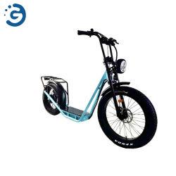 2020の熱い販売Tuは脂肪タイヤのスクーター様式の電気バイクに立つ-2620新しい到着を立てる