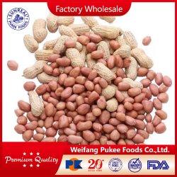 Cáscara de cacahuete cruda /China /Nueva cosecha