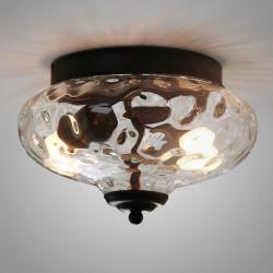 Feux du plafond de verre industriel Accessoires pour l'intérieur de l'éclairage d'accueil (WH-LA-24)