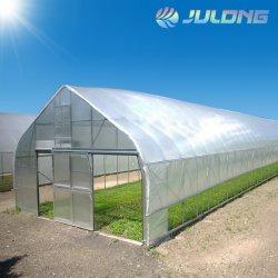 Устойчив к снег ветровой энергии солнца и легко установить единый Span внутри туннеля Greeenhouse для выращивания овощей растет