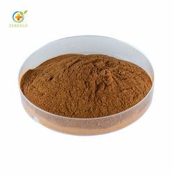L'Angelica naturel extrait de racine de l'Angelica poudre organique