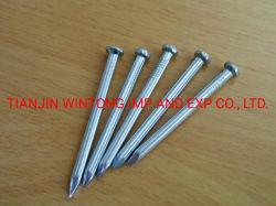 Gekennzeichnete Zink-überzogene elektrische galvanisierte konkrete Stahlnägel mit weißer blauer Farbe