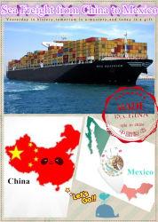 Морские грузовые перевозки (FCL/LCL) грузы из Китая в Мехико, Альварадо, Гвадалахара, Manzanillo Мексики