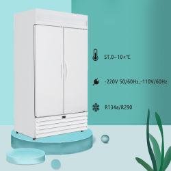 Laboratório de porta dupla frigorífico, Farmacêutica frigoríficos especializados equipamentos frigoríficos para a armazenagem a frio de produtos farmacêuticos
