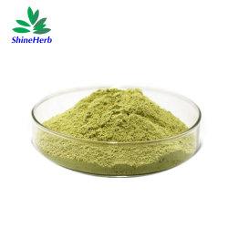 Производство питания природным Sophora Japonica извлечения порошок Rutin 98%