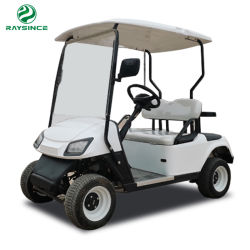 Prêt à expédier de 2 sièges mini-voiturette de golf électrique avec batterie 48V