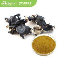 Black Extracto do fungo em pó