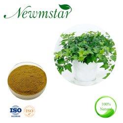 IVY извлечения айви экстракт листьев Hedera Helix с сертификатом ISO