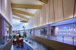 China Standaard formaat Woodgrain Bouwmateriaal /Extrior/Exteral Wall Panel /Aluminium Gevel plafond