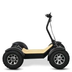 6000W 60V 電気 ATV 四輪バイクオフロード電気スクーター中国 卸売