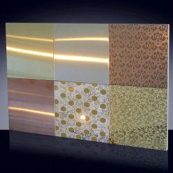 Dekoratives Radierungs-Ende-Edelstahl-Blatt der Serien-CR304