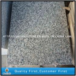 Version bêta de poli à bon marché Rosa G623 des carreaux de sol en granit gris