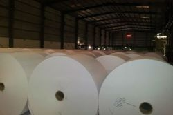 OffsetPaper, Uncoated Woodfree Printing Paper /Bond Paper (80-180GSM)