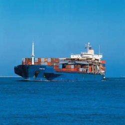 Lowشرق السعر بحرية الشحن من الصين إلى سنغافورة