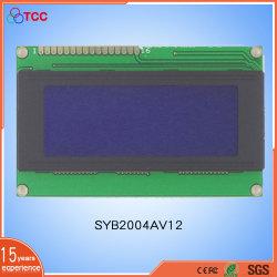 20X4 van de LEIDENE van punten de MAÏSKOLF 2002 LCD van het Karakter van de Raad LCM LCD Vertoning 20*02LCD