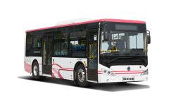 Slk 6939 neuer Entwurfs-Intercitybus-Dieselstadt-Bus