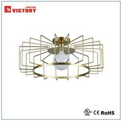 Surface ronde métal or Projet d'éclairage de plafond Lampe à LED avec E27