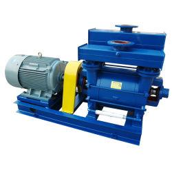 Flüssiger Ring-Vakuumkompressor, KolbenVakuumpumpe, flüssige Ring-Vakuumpumpe (2BE, 2BV, SK) selben zur Nash Marke
