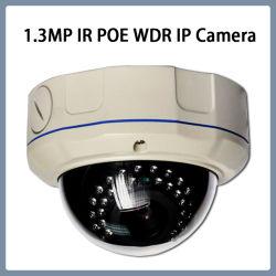 Infrarrojos IP WDR 1.3MP IK10 Cámara domo de vigilancia por CCTV antivandálico